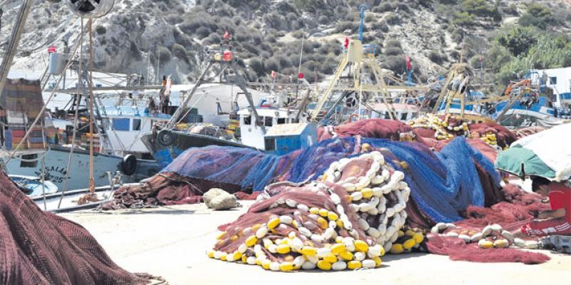 Oriental: La pêche côtière perturbée