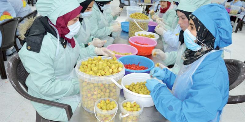 Oriental: De nouvelles offres de financement pour les PME