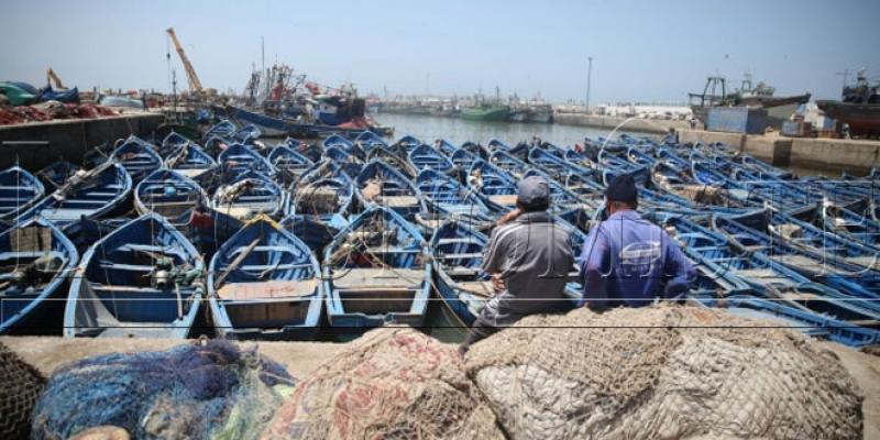 La pêche artisanale enfin assurée