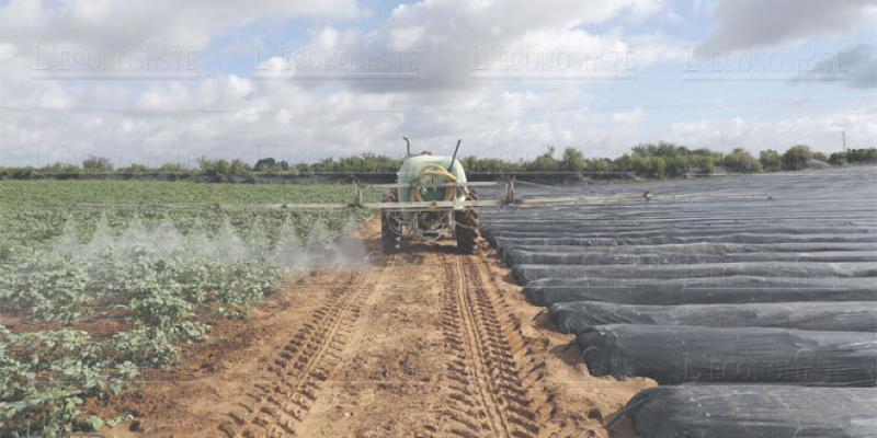 PLF 2019: Les agriculteurs veulent plus d'incitations
