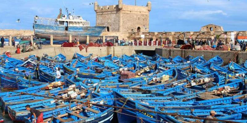 Le port d'Essaouira reprend du service