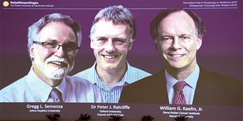 La médecine ouvre la nouvelle saison des Nobel