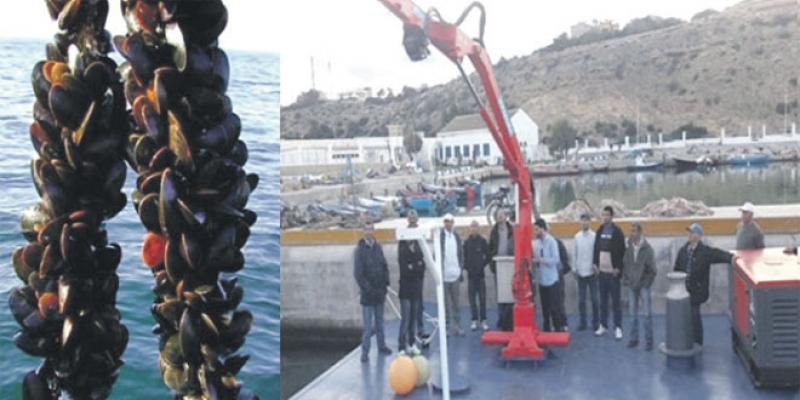 L'Oriental parie à son tour sur l'aquaculture