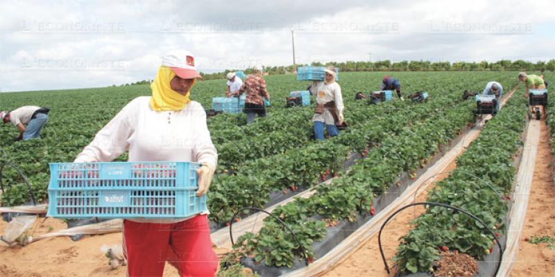 Saisonniers à Huelva: Les gouvernements veulent rassurer
