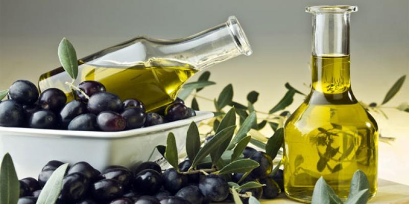 Huile d'olive à Essaouira Un pari fou en terre d'argan