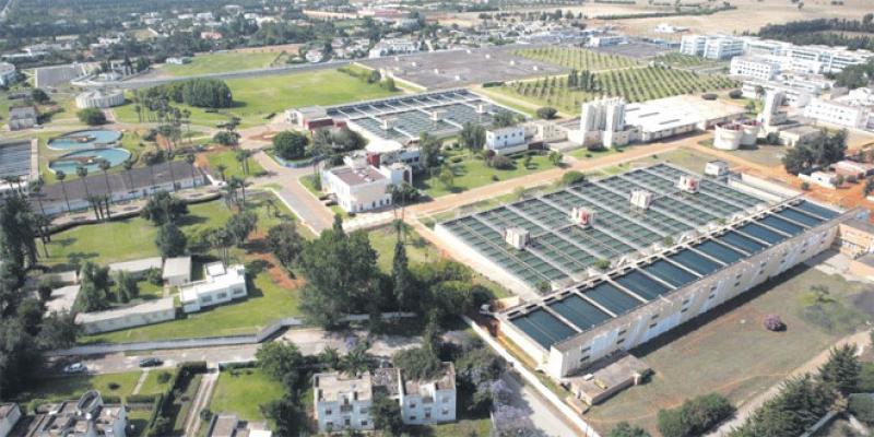 Station du Bouregreg: L'ozonation pour le traitement des eaux
