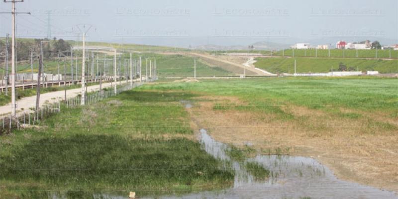 Tanger: Extension en cours pour la ZI d'Ain Dalia