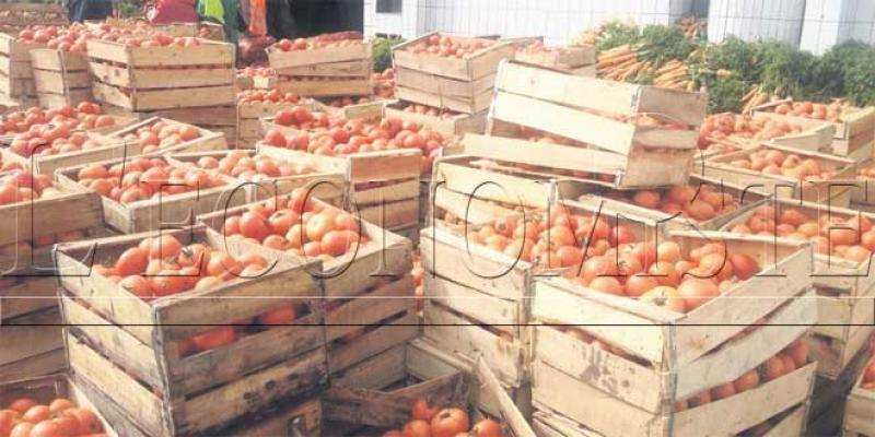 Tomates: Une campagne export moyenne
