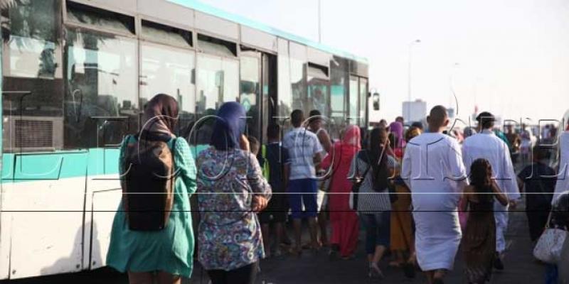 Concurrence Transport et marchés publics, la grande plaie