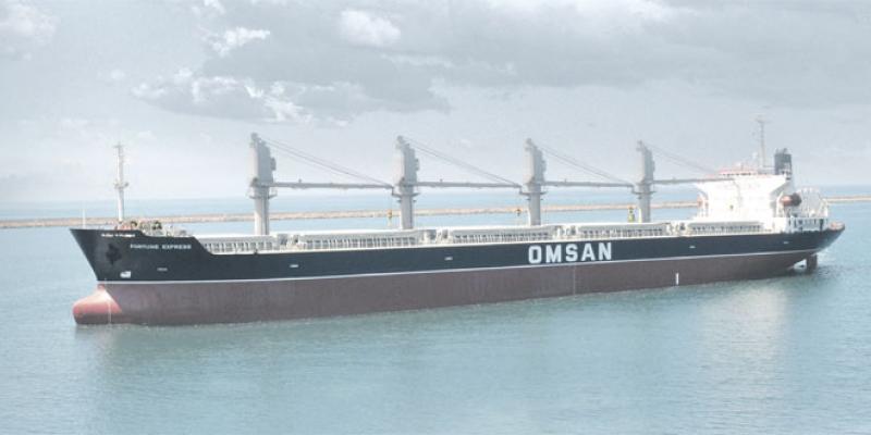 Transport maritime/logistique: Le turc Omsan monte en puissance