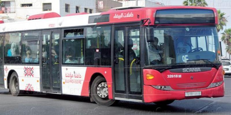 Casablanca: 560 millions de DH pour le transport par bus
