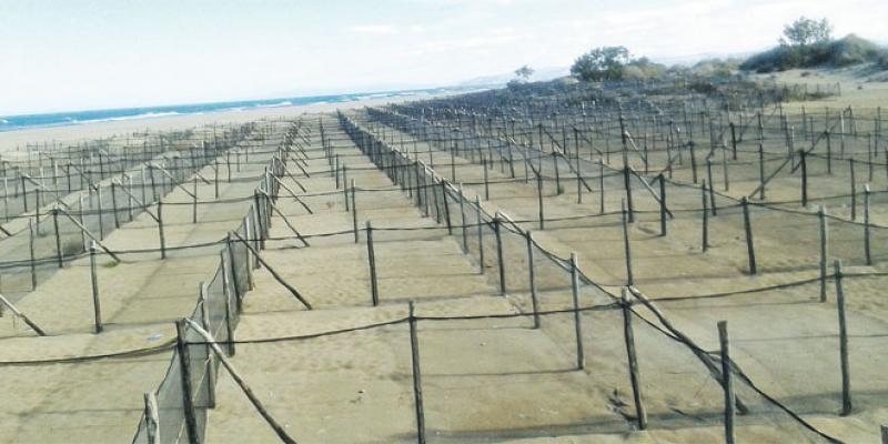 Gestion intégrée des zones côtières: Le Maroc peaufine son modèle