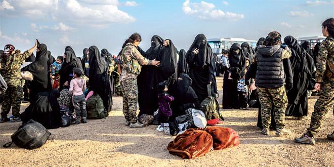 Syrie : Des affrontements entre régime et jihadistes