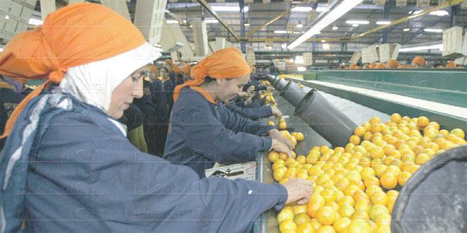 accord-agricole-maroc-ue-034.jpg