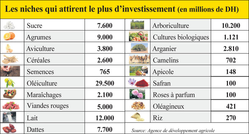 agricukture_solidaire_022.jpg