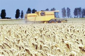 agriculture_010.jpg