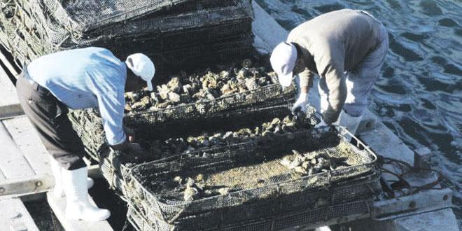 aquaculture-091.jpg