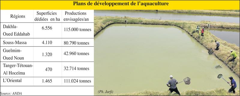 aquaculture_011.jpg