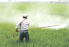 bio-pesticides_00.jpg