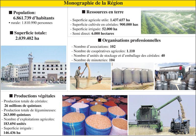 casa-settat_agriculture_021.jpg
