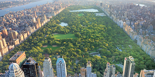 central_park_a_new_york.jpg