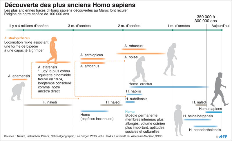 decouverte_homo_sampiens_042.jpg
