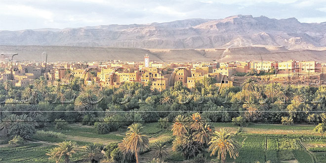 draa-tafilalet-oasis-081.jpg