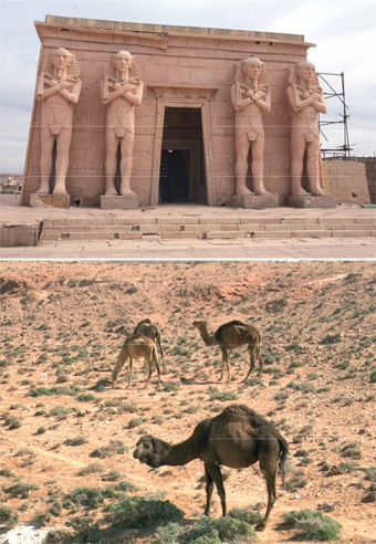 eco_trail_morocco_2_094.jpg