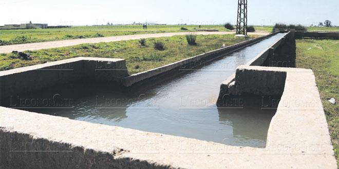 ecologie-eau-066.jpg