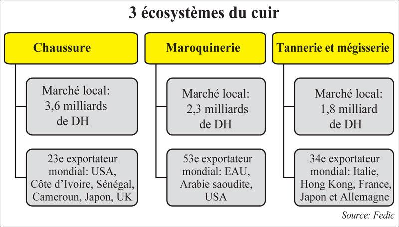 ecosystemes-du-cuir-005.jpg