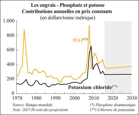 engrais_phosphate_048.jpg