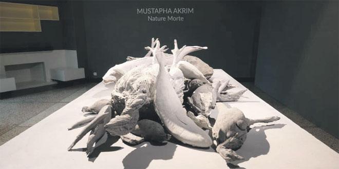 expo-mustapha-akrim-078.jpg