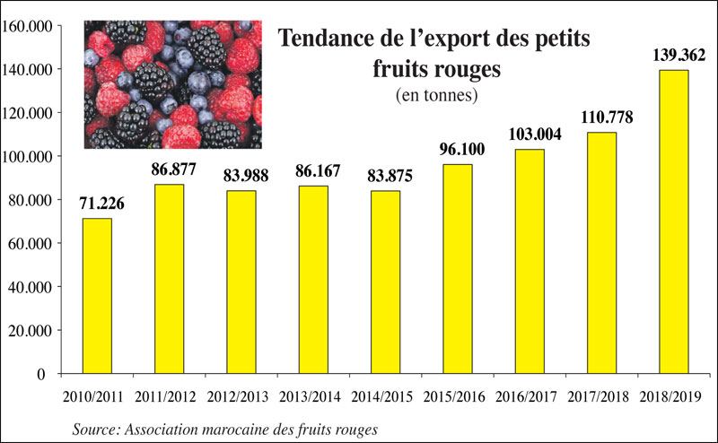 export-fruits-rouge-090.jpg