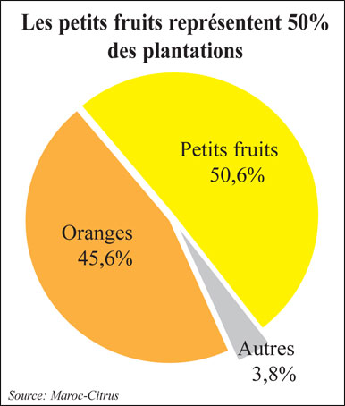 export-petits-fruits-028.jpg
