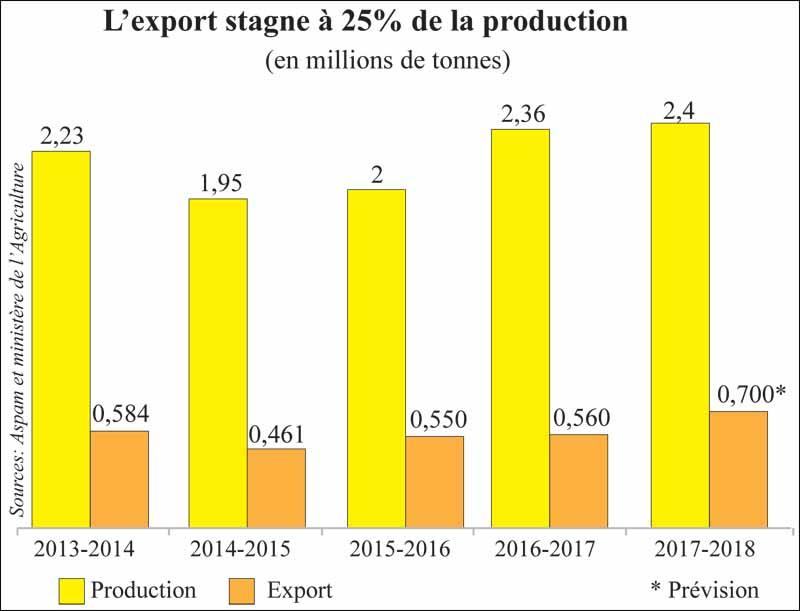export_agrumes_045.jpg