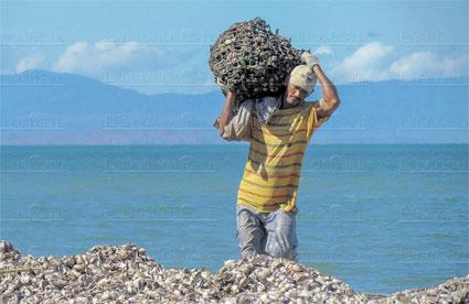fermes-de-mollusques-074.jpg
