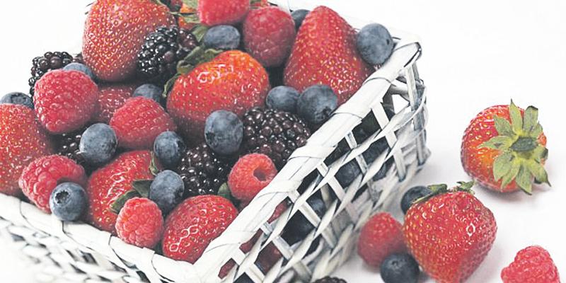 fruits_005.jpg