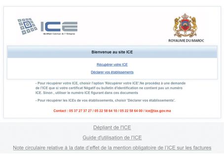 ice_041.jpg