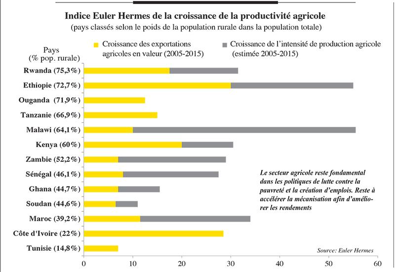 indice_hermes_4968.jpg