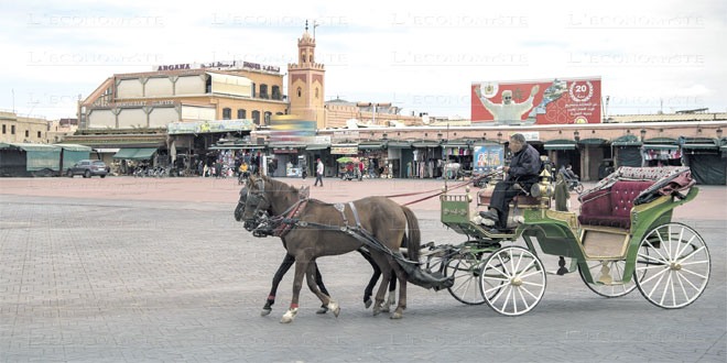 marrakech-tourisme-040.jpg