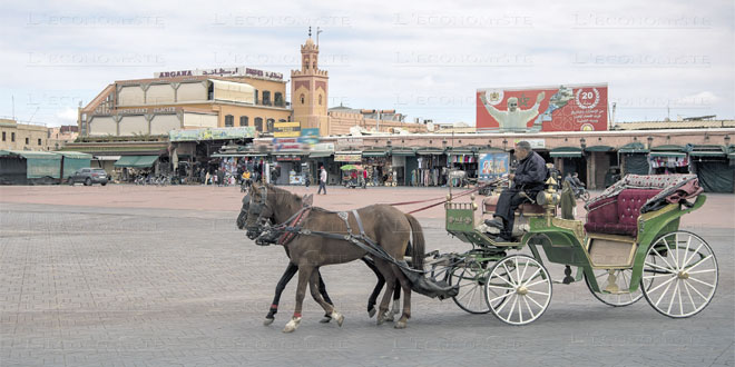 marrakech-tourisme-045.jpg