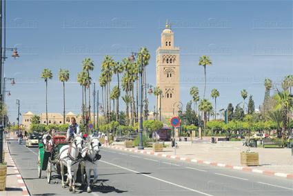 marrakech_075.jpg