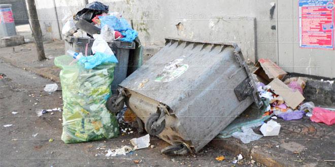 ordures-poubelles-051.jpg