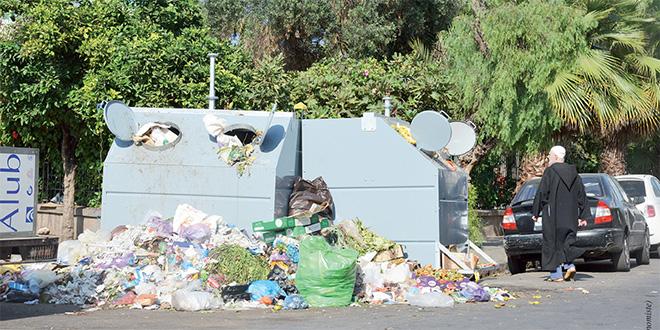 ordures_5549.jpg