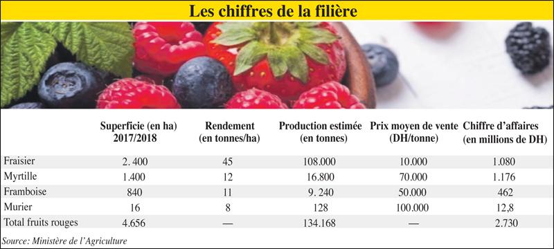 petits_fruits_rouge_026.jpg