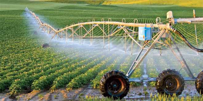plan-agricole-009.jpg