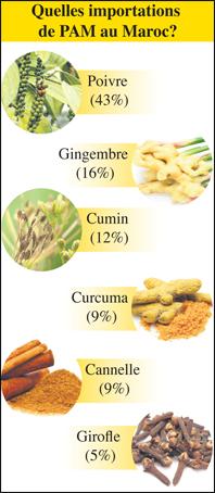 plantes_aromatiques_et_medicinales_export_096.jpg