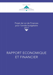 rapport_financier_interne.jpg