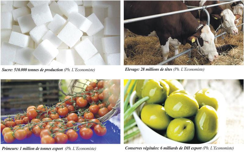 strategie_agroalimentaire_059.jpg