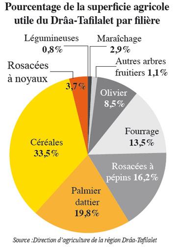 superficie-agricole-draa-tafilalet.jpg